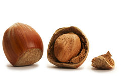 One cracked and and one closed hazelnut Royalty Free Stock Image