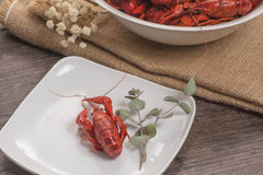 One crawfish on the wooden surface with glass of beer Royalty Free Stock Images