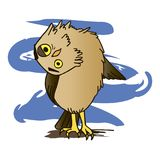 Owl. One crazy owl on a branch with his head turned out Stock Photography