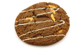 One crunchy chocolate chip cookie with nuts Stock Photo