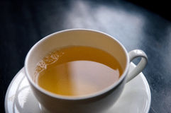 One cup of green tea Stock Image