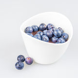 One cup of pudding with blueberries Royalty Free Stock Photo
