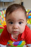 One Cute Kid!. A little boy, looking up, with big brown eyes stock image