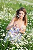 One daisy, two daisy Stock Photography