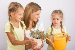 One daughter was mad at my mom and another daughter watering flowers Stock Photo