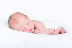 One day old newborn baby on white blanket Royalty Free Stock Images