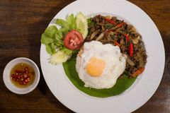 One dish meal thai food. Fried meat with basil leaves and spicy chilli spicy with fried eggs Royalty Free Stock Image