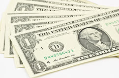 One dollar Royalty Free Stock Photography