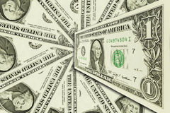 One dollar on background Royalty Free Stock Images