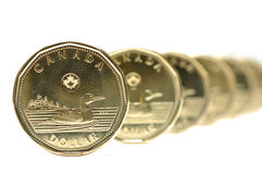 One dollar coin pattern. Canadian one dollar coin pattern royalty free stock images