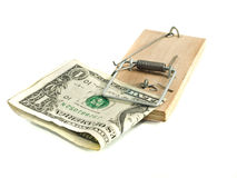 One Dollar in the mousetrap Royalty Free Stock Photography