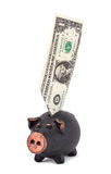 One dollar and piggy bank Stock Photo