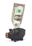 One dollar and piggy bank Stock Image