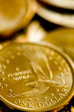 One Dollar United States Of America Gold Coins Royalty Free Stock Photos