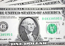 One dollars Royalty Free Stock Photo