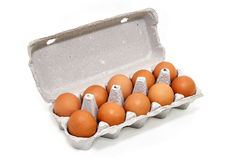 One dozen chicken eggs in a cardboard container Stock Images