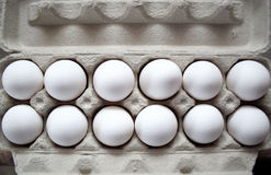 One Dozen Eggs Royalty Free Stock Photography