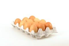 One Dozen Eggs royalty free stock image