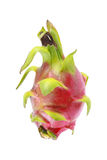 one dragon fruit isolated on white Royalty Free Stock Photography