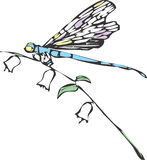 One Dragonfly Stock Photography