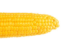 One on ear of corn Royalty Free Stock Image
