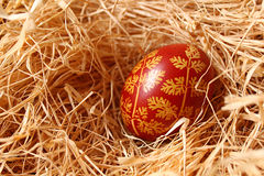 One easter egg. In straw Royalty Free Stock Images