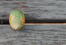 One Easter Egg. Traditional Greek style painted hens egg , Easter tradition , on shabby chic wooden bench Royalty Free Stock Photo