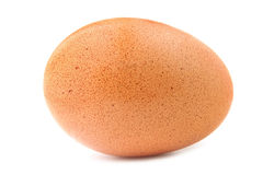One egg Stock Images