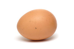 One egg Royalty Free Stock Photography
