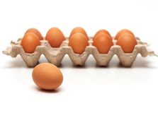 One egg. Is out of container Stock Photography