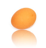 One egg Stock Image