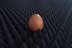 One egg on abstract bumpy black background with perspective Stock Photography