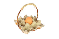 One egg in a basket Royalty Free Stock Image