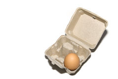 One egg in a box Royalty Free Stock Image