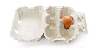 One egg in box. Stock Image