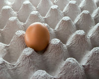 One egg in eggcup Stock Photos