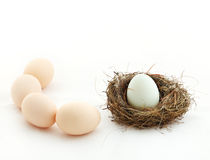 One egg inside the nest and other eggs outside Stock Photo