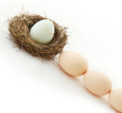 One egg inside the nest and other in queue Stock Images