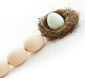 One egg inside the nest and other in queue Royalty Free Stock Photos