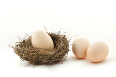 One egg inside the nest and two eggs outside Stock Photography