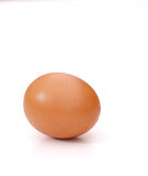 One egg isolated white Stock Image