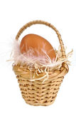One egg in a little basket Stock Photography