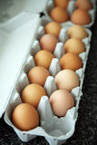 One egg missing. From egg boxes Royalty Free Stock Image