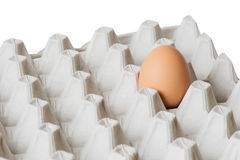 One egg in the package Royalty Free Stock Photos