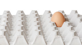 One egg in the package Royalty Free Stock Photography