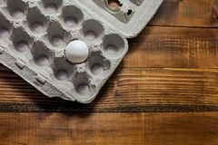 One egg in paper box stock photo
