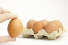 One Egg removed Stock Photos