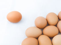 One egg Separation from the group Royalty Free Stock Images
