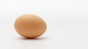 One egg on a white background.  Stock Images