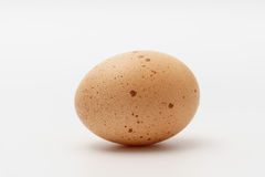 One egg on a white background. One egg lying on a white background Royalty Free Stock Photo